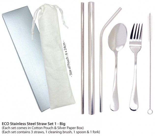 Eco Stainless Steel Straw Set 1 - Big