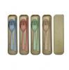 Wheat Straw Cutlery Set