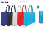 Non Woven Bag (L)