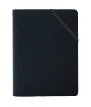 PGM ED Alpha Diary