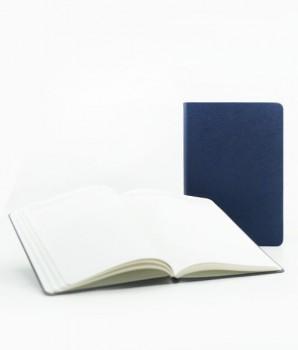 PGM ED Starskin Notebook