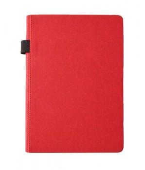 PGM ED Styloskin Notebook