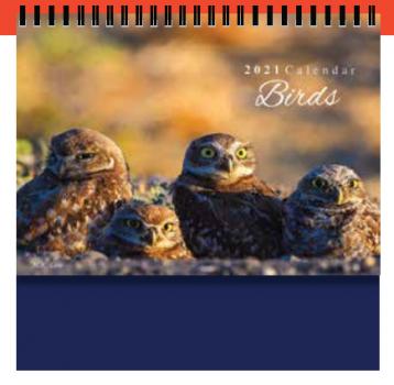 PGM ED Desktop Calendar - 360 Birds