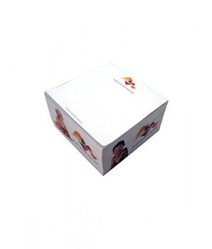 PGM ED Sticky Notepad Memo Cube